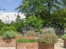 Giardinaggio terapia
